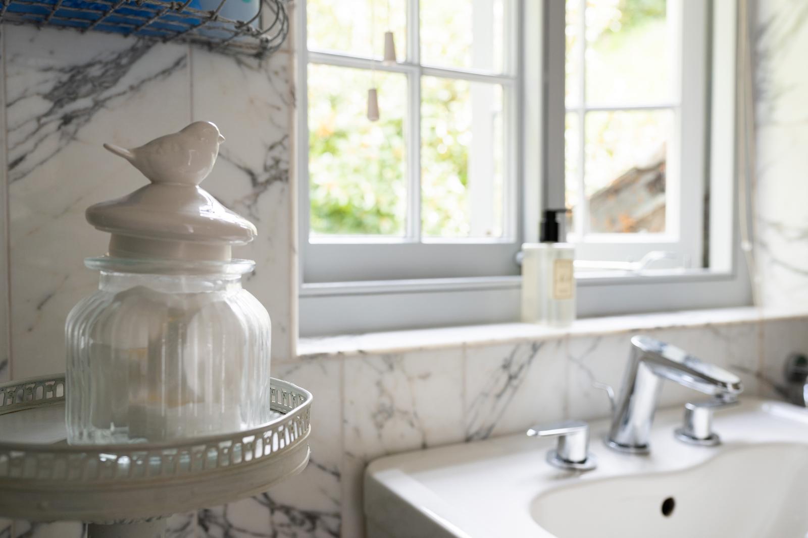 Shower room: basin
